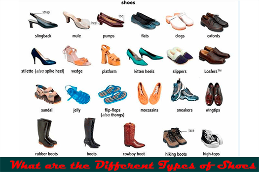 What are the Different Types of Shoes